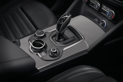 Carbon fibre inserts for automatic transmission knob
