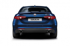 Twin exhaust tailpipe kit for petrol versions